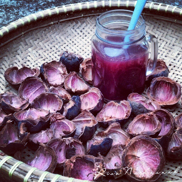Juicing the Mangosteen Skin for Boosted Antioxidant
