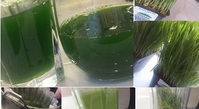 Wheatgrass-Juice-Benefits-640x350